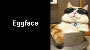 A1_015.00_Eggface