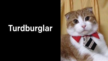 A1_019.00_Turdburglar