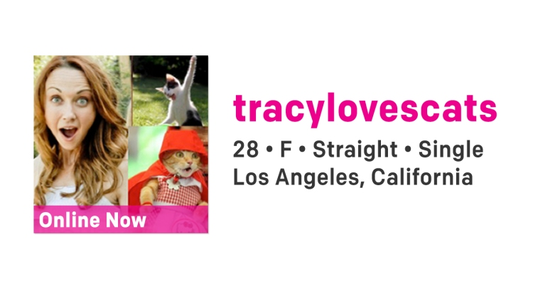 A2_316.00B_tracylovescats-2